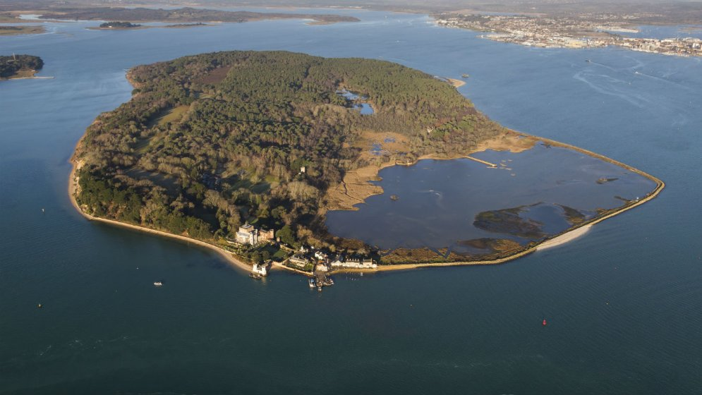BROWNSEA ISLAND! featured image