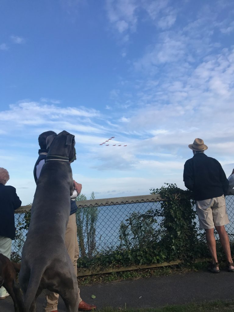DUDLEY ENJOYED THE RED ARROWS! featured image