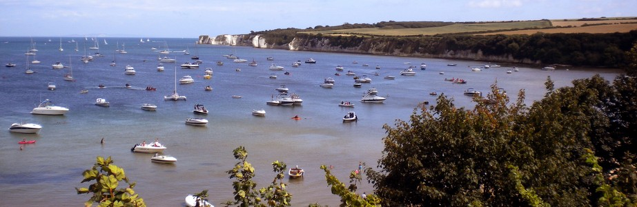 BEAUTIFUL STUDLAND VILLAGE featured image